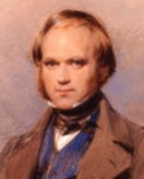 афоризмы, цитаты, высказывания, фразы Чарльз Роберт Дарвин
